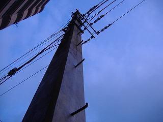 日本一古い電柱.jpg